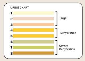Urine kleur test